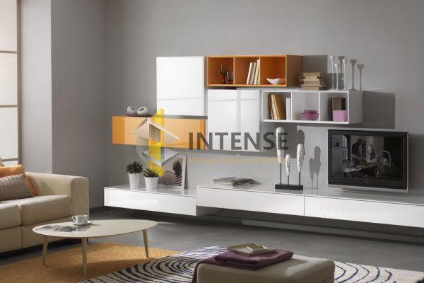 Магазин корпусной мебели Intense производит Гостиные из эмали - Гостиная - Монако