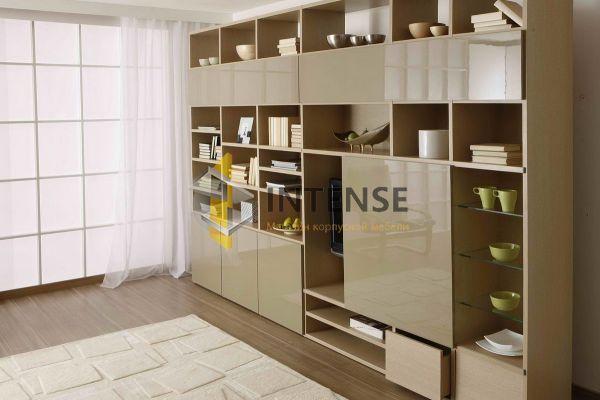 Магазин корпусной мебели Intense производит Гостиные из эмали - Гостиная - Кромо