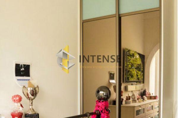 Магазин корпусной мебели Intense производит Шкафы купе - Шкаф Лира