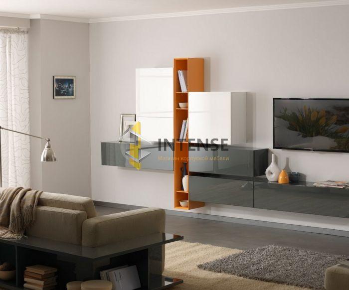 Магазин корпусной мебели Intense производит Гостиные из эмали - Гостиная - Лофт