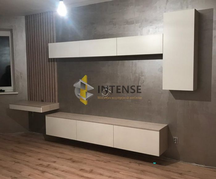 Магазин корпусной мебели Intense производит Шкафы - Гостиная и шкаф. Рейки.