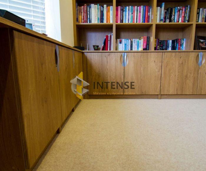 Магазин корпусной мебели Intense производит Шкафы купе - Шкаф Стронг