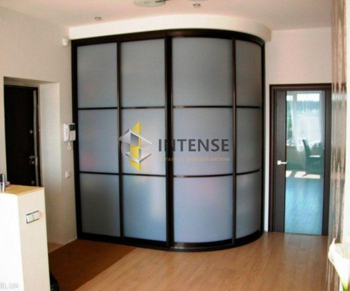 Магазин корпусной мебели Intense производит Шкафы купе - Шкаф Норд
