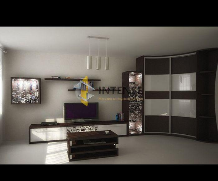 Магазин корпусной мебели Intense производит Шкафы купе - Шкаф Степ