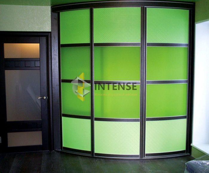 Магазин корпусной мебели Intense производит Шкафы купе - Шкаф Лайм